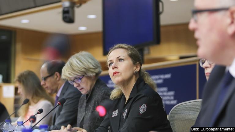 EU-parlamentarikern Cecilia Wikström (FP) är ordförande i utskottet för framställningar.