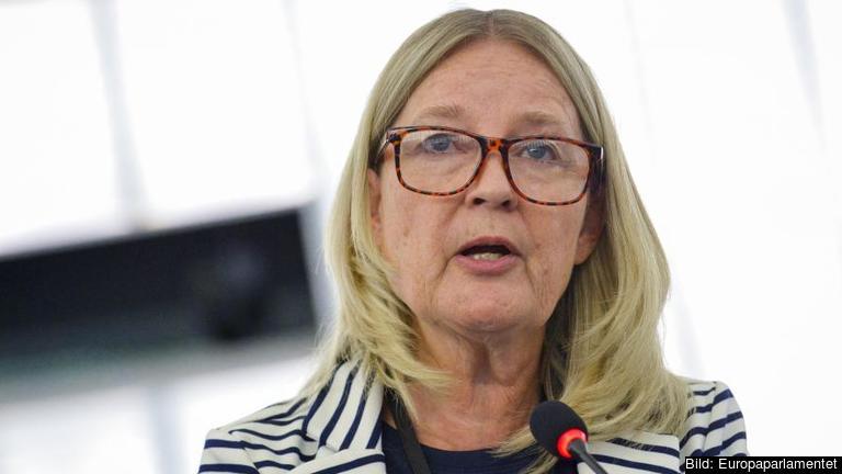 – Det är klart att jag har hopp men det blir en ganska lång och komplicerad väg, säger Marita Ulvskog (S) om reformeringen av utstationeringsdirektivet.