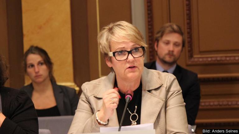 Désirée Pethrus (KD) talar i EU-nämnden inför dagens EU-toppmöte.