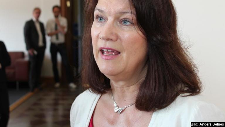 EU- och handelsministern Ann Linde vill ha en fördjupad diskussion om EU:s framtid.