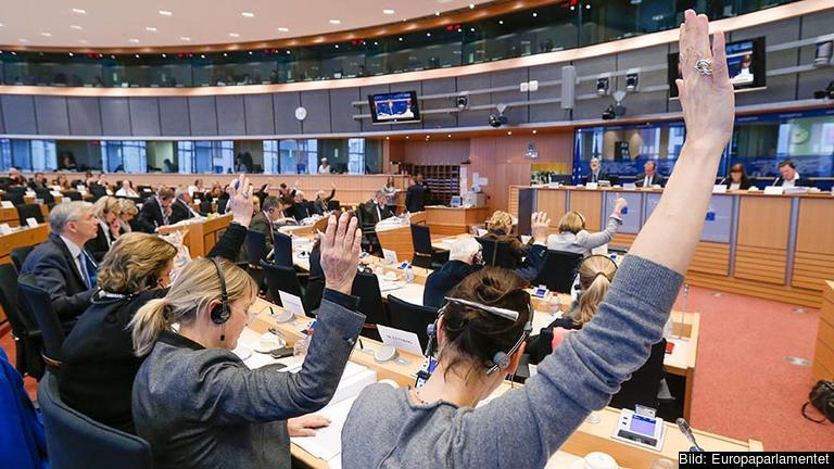 I utskotten genomförs mycket av det dagliga arbetet i EU-parlamentet. Arkivbild.
