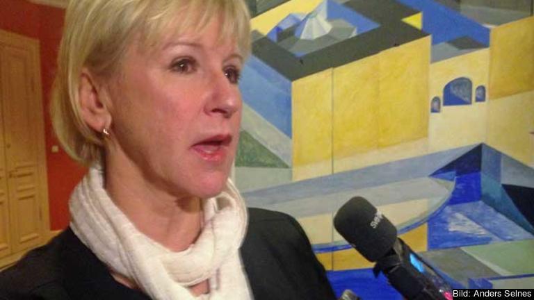 Utrikesminister Margot Wallström (S) menar sig ha rätten att informera andra utrikesministrar om svenska regeringens vilja att erkänna Palestina. EU-nämnden vill dock att frågan först ska upp i utrikesnämnden.