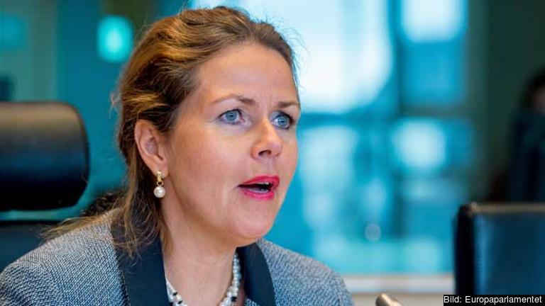 –Jag personligen se till att det läggs fram konkreta förslag som ska göra det lättare att använda medborgarinitiativet, säger Cecilia Wikström (FP).