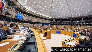 Parlamentariker från de små medlemsländerna hamnar ofta i toppen eller botten. Arkivbild.
