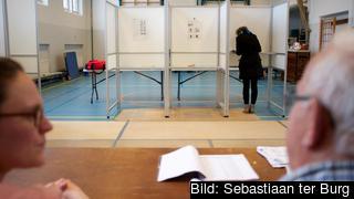 Att anordna en folkomröstning beräknas kosta drygt 280 miljoner kronor. Arkivbild.