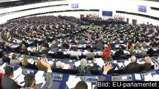 Omkring 35 procent av alla EU-parlamentariker är kvinnor. Arkivbild.