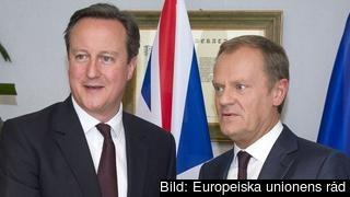 David Cameron och Donald Tusk inför torsdagens toppmöte.
