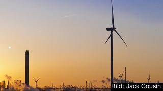 Vindkraftverk i Nederländerna. Arkivbild.