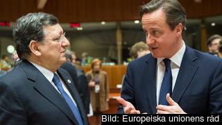 EU-kommissionens ordförande José Manuel Barroso och Storbritanniens premiärminister David Cameron diskuterar. Arkivbild.