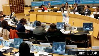 Sverige representeras av tolv ledamöter. i EESK. De kommer från tre olika intressegrupper: arbetstagare, arbetsgivare och andra intressegrupper. Europeiska ekonomiska sociala kommittén, EESK.