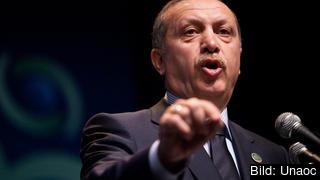 Turkiets premiärminister Recep Tayyip Erdoğan uttalande var oväntat.