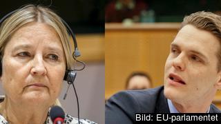 EU-parlamentarikerna Marita Ulvskog (S) och Christofer Fjellner (M).