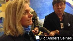 Finansminister Magdalena Andersson är avvaktade mot Junckers utlovade investeringsplan.
